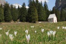 Frühling im Grödnertal